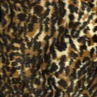 Animal Print ANIMAL PRINT7 Δαλματίας
